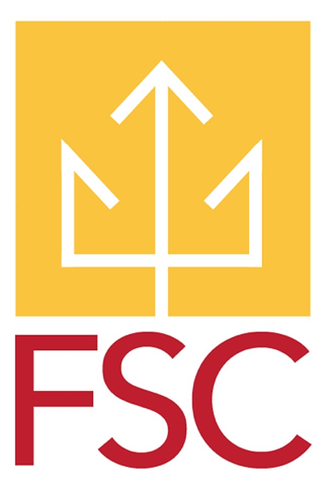 Fulton Schools Engineering Student Council (FSC) Logo