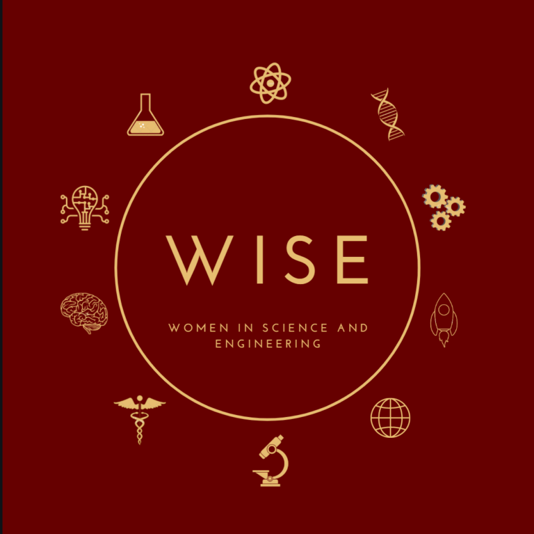 WISE logo sphere